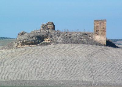 Galería Castillo 1