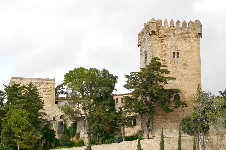 Castillo ducal 2