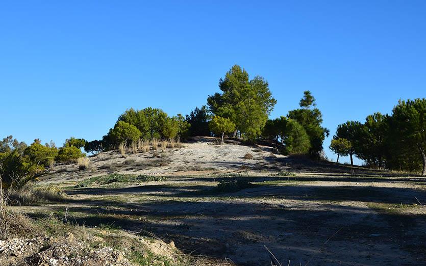 Cerro de la Alcoba 3
