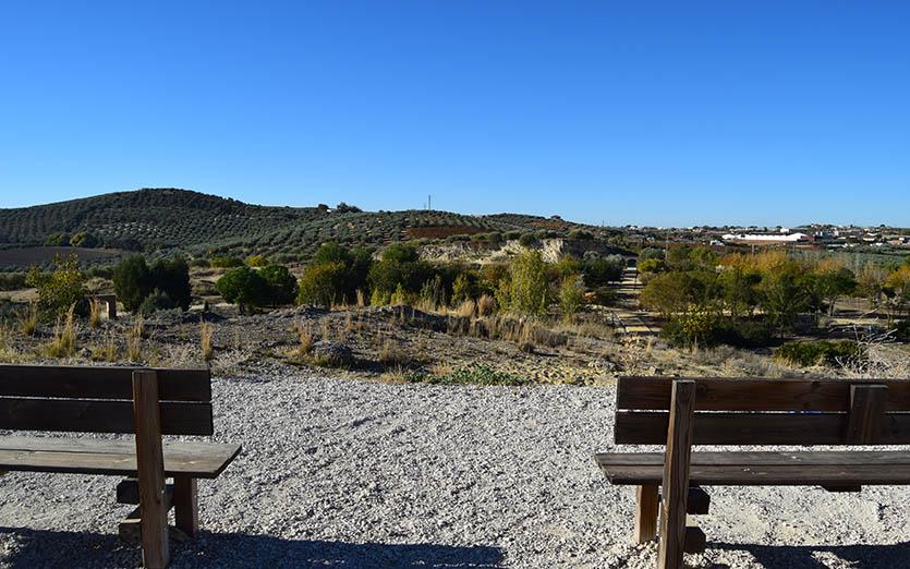 Cerro de la Alcoba 7