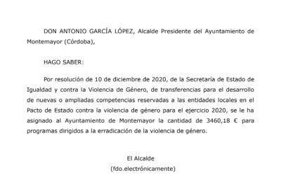 Publicación subvención Pacto de Estado 2020